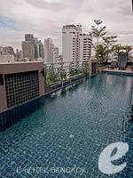 Swimming Pool : Adelphi Suites, Free Wifi, Phuket