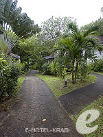 Garden : Arayaburi Resort Phi Phi, USD 100 to 200, Phuket