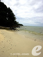 Tong Sai Beach : Arayaburi Resort Phi Phi, USD 100 to 200, Phuket