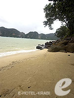 Laem Hin Beach : Arayaburi Resort Phi Phi, Family & Group, Phuket