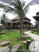 Garden : Bophut Resort & Spa, Bophut Beach, Phuket