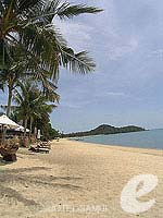 Beach : Bophut Resort & Spa, Bophut Beach, Phuket