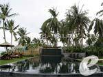 Swimming Pool : Buri Rasa Village Koh Samui, Beach Front, Phuket