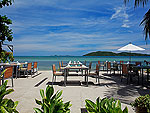 Restaurant : Centra Coconut Beach Resort Samui, Pool Access Room, Phuket