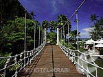 Bridge accross the Pool : Centara Grand Beach Resort & Villas Krabi, Beach Front, Phuket