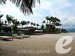 Beach : Deva Beach Resort & Spa, Couple & Honeymoon, Phuket