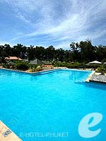 Swimming Pool #1 : Dewa Phuket, Serviced Villa, Phuket
