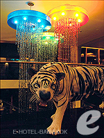 Decoration : Dream Hotel Bangkok, Sukhumvit, Phuket