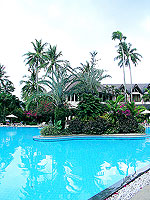 Swimming Pool : Duangjitt Resort & Spa, Patong Beach, Phuket
