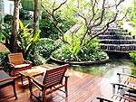 Garden : Dusit Thani Bangkok, Family & Group, Phuket