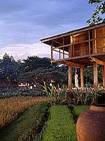 Yoga Barn : Four Seasons Resort Chiang Mai, with Spa, Phuket