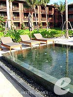 Jacuzzi : Hansar Samui Resort & Spa, Couple & Honeymoon, Phuket