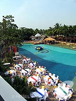 Swimming Pool : Hard Rock Hotel Pattaya, North Pattaya, Phuket
