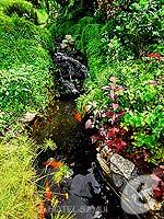 サムイ島 スパ併設のホテル : シェラトン サムイ リゾート 「Garden」