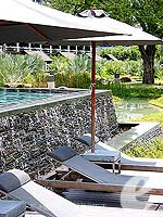 Swimming Pool : The Slate, USD 100 to 200, Phuket