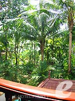 プーケット ファミリー&グループのホテル : JW マリオット プーケット リゾート&スパ(JW Marriott Phuket Resort & Spa)のデラックスルームの設備 Balcony View