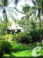 プーケット ファミリー&グループのホテル : JW マリオット プーケット リゾート&スパ(JW Marriott Phuket Resort & Spa)のデラックスルームの設備 Garden View