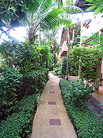 Garden : Kata Country House, Kata Beach, Phuket