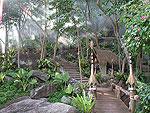 サムイ島 タオ島のホテル : コ タオ カバナ 「Passage」