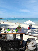 Beach : Le Paradis Boutique Resort & Spa, USD 50-100, Phuket