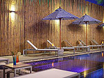 Swiming Pool : Malibu Koh Samui Resort & Beach Club, Chaweng Beach, Phuket