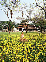 Meditation : The Dhara Dhevi Hotel Chiang Mai, Other Area, Phuket