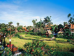 Rice Fieldsroyal_vil / The Dhara Dhevi Hotel Chiang Mai, ฟิตเนส