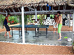 Table Tennis / Milkybay Resort, เกาะพงัน