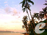 Beach : Belmond Napasai, Couple & Honeymoon, Phuket