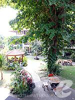 パタヤ ジョムティエンビーチのホテル : ナチュラル パーク リゾート(Natural Park Resort)のスタンダードルームの設備 View from Window