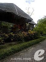 クラビ キャンペーンのホテル : ピピ アイランド ヴィレッジ ビーチリゾート(Phi Phi Island Village Beach Resort)のデラックス バンガロウルームの設備 Exterior