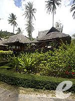 クラビ キャンペーンのホテル : ピピ アイランド ヴィレッジ ビーチリゾート(Phi Phi Island Village Beach Resort)のビーチフロント ジュニア スイートルームの設備 Exterior