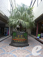 Entrance : P. P. Palm Tree Resort, Phi Phi, Phuket