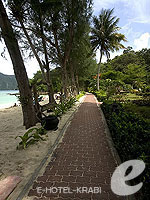 クラビ ピピ島のホテル : パラダイス パール バンガロー 「Passage」