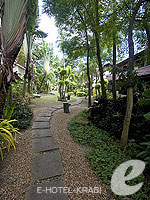 Garden : Phi Phi Banyan Villa, Couple & Honeymoon, Phuket