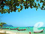 Rawai Beach : Rawai Palm Beach Resort, Free Wifi, Phuket