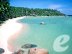Beach : Renaissance Koh Samui Resort & Spa, Beach Front, Phuket