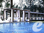 Swimming Pool : Sala Phuket Resort & Spa, Couple & Honeymoon, Phuket