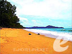 Beach : Sala Phuket Resort & Spa, Couple & Honeymoon, Phuket