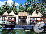 Lap Pool / SALA Samui Choengmon Beach Resort, หาดเชิงมนต์