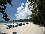 Beach : Samui First House Hotel, Chaweng Beach, Phuket