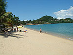 Beach / Samui Palm Beach Resort, หาดบ่อผุด