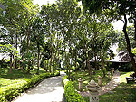 Garden : Secret Cliff Resort & Restaurant, Karon Beach, Phuket