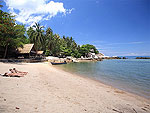 Beach / Sensi Paradise Beach Resort, เกาะเต่า