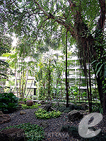 Garden : Siam Bayshore Resort & Spa, Ocean View Room, Phuket