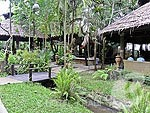 Garden : Somkiet Buri Resort & Spa, Family & Group, Phuket