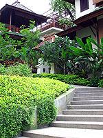 Garden : The Briza Beach Resort & Spa, Chaweng Beach, Phuket