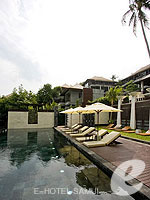Swimming Pool : The Kala Samui, Pool Villa, Phuket