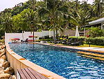 Swimming Pool : The Lotus Terraces, Pool Villa, Phuket
