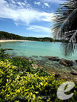 Sea View : The Nai Harn, Other Area, Phuket
